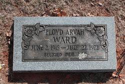 Floyd Arvah Ward