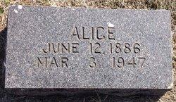 Alice Elis Anderson
