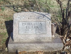 Patricia A <i>Miller</i> Clark