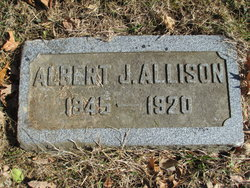 Albert J Allison