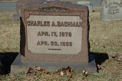 Charles Adam Bachman
