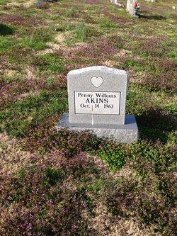 Penny Wilkins Akins
