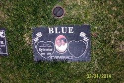 Sylvester Blue