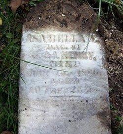 Isabella E. Henry