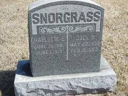 Charlotte E. <i>Martin</i> Snorgrass