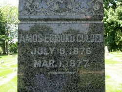 Amos Edmond Colden