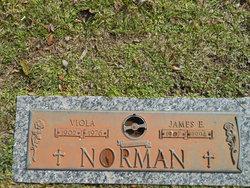 Viola Norman