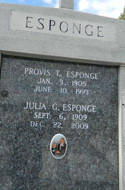 Provis Thomas Esponge