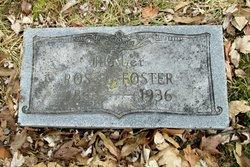 Rose <i>Wickman</i> Foster