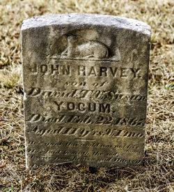 John Harvey Yocum