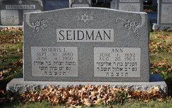 Ann Seidman