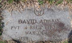 Rev David Adams