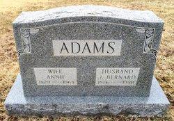 Annie <i>Shoeman</i> Adams
