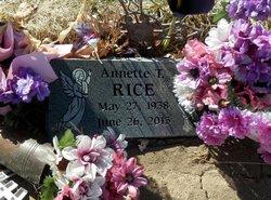 Annette T Rice