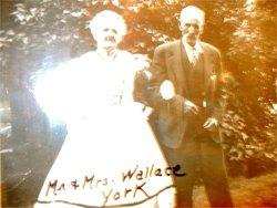 William Wallace York