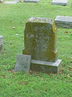 Joseph Wilmer Adams