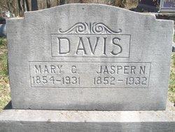 Jasper N. Davis