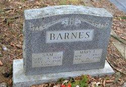 Mary E. <i>Long</i> Barnes