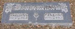 Anthony Briesemeister