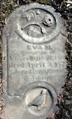 Eva M Case
