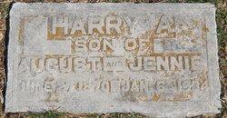 Harry Allen Baker