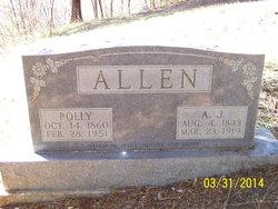 Andrew Jackson A. J. Allen