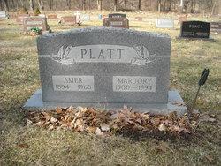 Amer R Platt