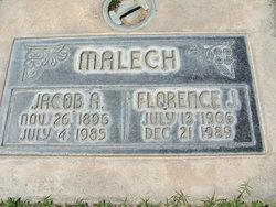 Florence J. <i>Skelton</i> Malech