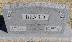 Charles Johnson Beard