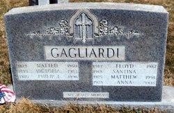 Philip J Gagliardi