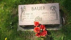 Peter M Bauer