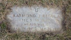 Raymond J Regula