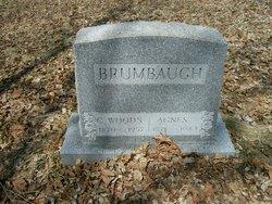 Agnes J. Brumbaugh