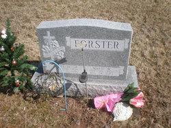Carl D. Forster, Sr
