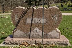Peter J Birk
