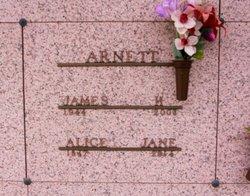 Alice Jane <i>McKinney</i> Arnett