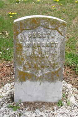 Sgt D W Burnet