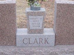 Vida D <i>Goodenow</i> Clark