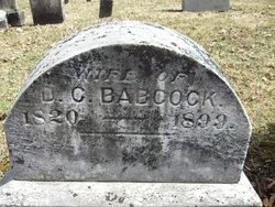 Sarah <i>Hill</i> Babcock