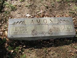 Agnes Alice <i>Williams</i> Amos