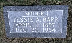Teresa Ann Tessie <i>Lee</i> Barr