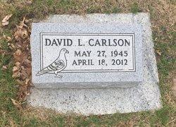David Leroy Carlson