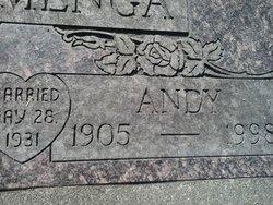 Andy Kammenga