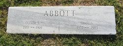 Idailia <i>Stanley</i> Abbott