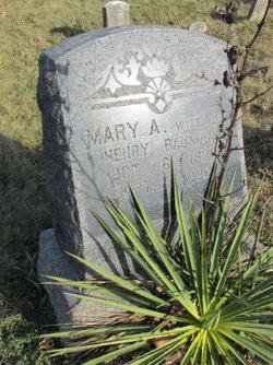 Mary A <i>Nuss</i> Bauman