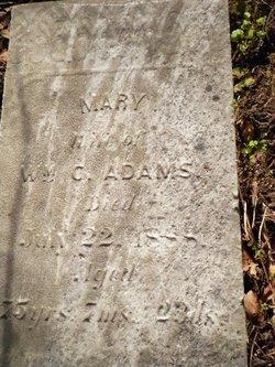 Mary <i>Sale</i> Adams
