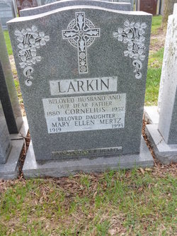Cornelius John Larkin