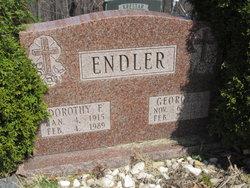 George F Endler