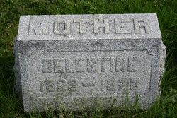 Celestine <i>Schillinger</i> Funda