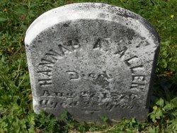 Hannah A. Allen